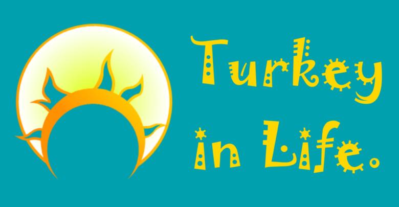 Турция в жизни Контакты