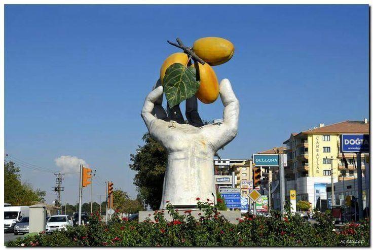 Символ города Малатья абрикос