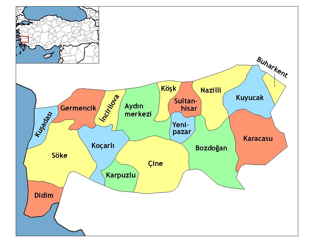 Районы провинции Айдын