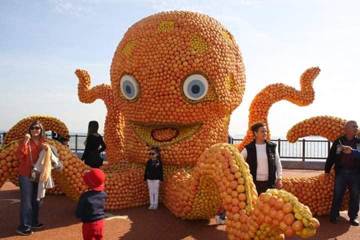 Фестиваль апельсинов