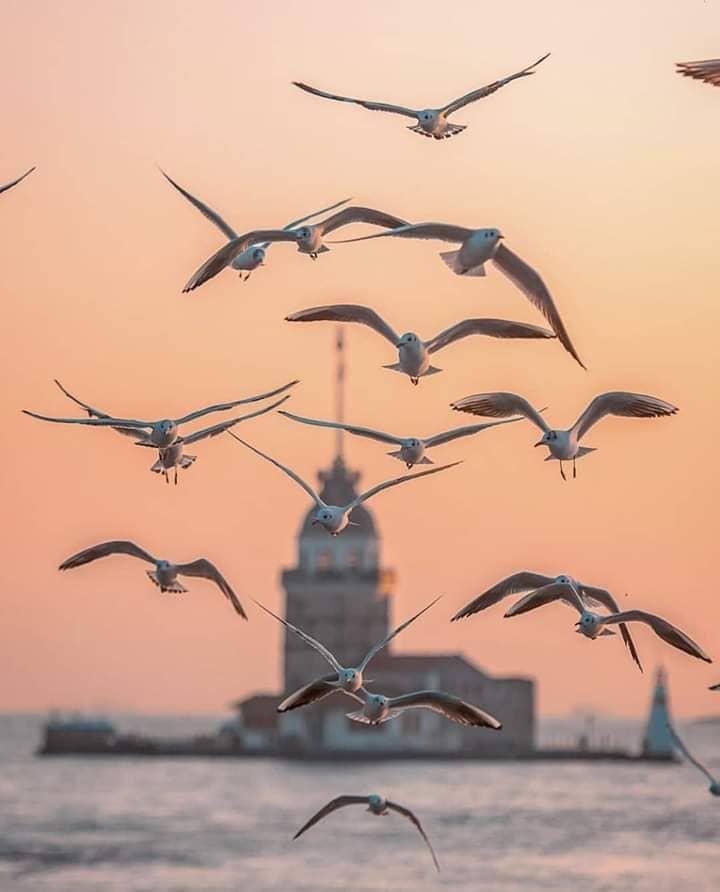 Девичья крепость Стамбула