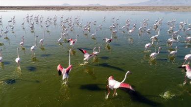 Photo of Озера Турции